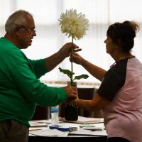 Shows-HM-Billeyer-C. Craig and S. Prusinski prepare a dahlia
