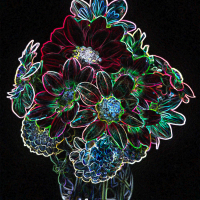 1st Place-Digital Darkroom- Blacklight at Night - Louise Henriksen