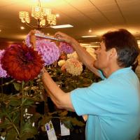 Shows/Clubs - HM - Nancy Riopelle Tony Evangelista Measuring