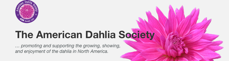 Fundamentals of Growing Dahlias – American Dahlia Society