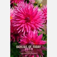 Cover of Dahlias of Today 2019
